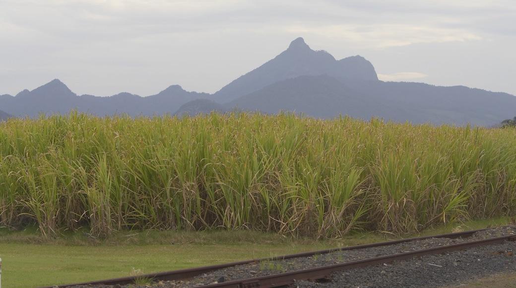 Parque Nacional Monte Advertencia mostrando montañas y granja