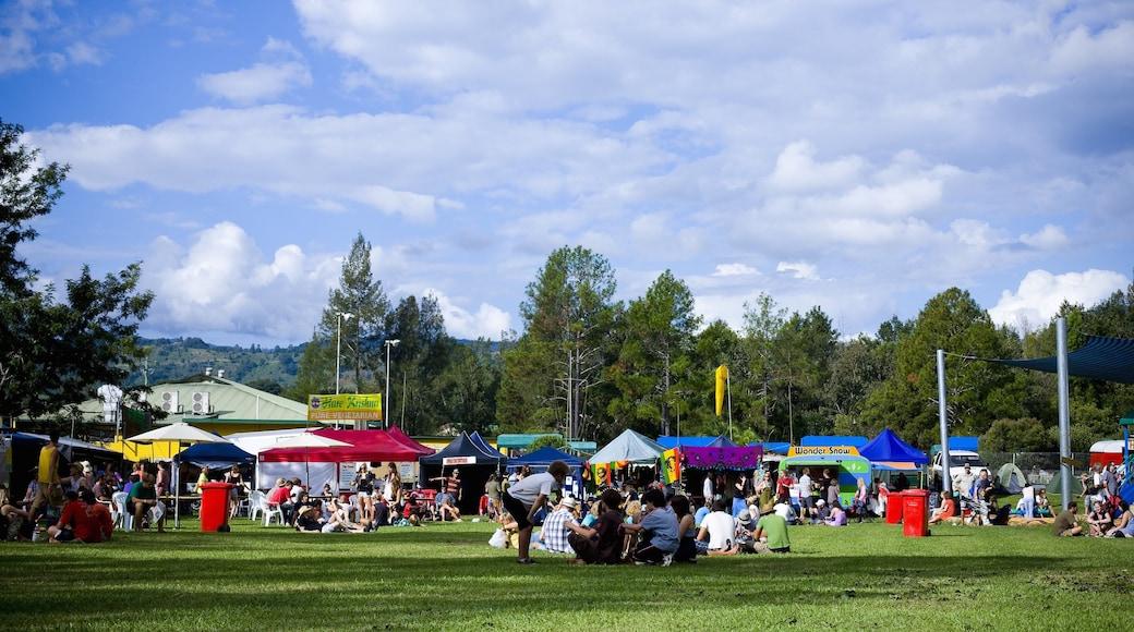 Lismore mostrando jardín y un festival y también un gran grupo de personas