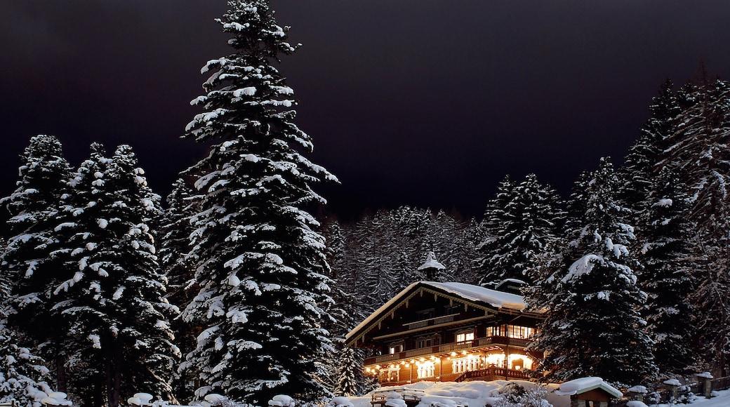 Sankt Anton am Arlberg welches beinhaltet Wälder, Schnee und Haus