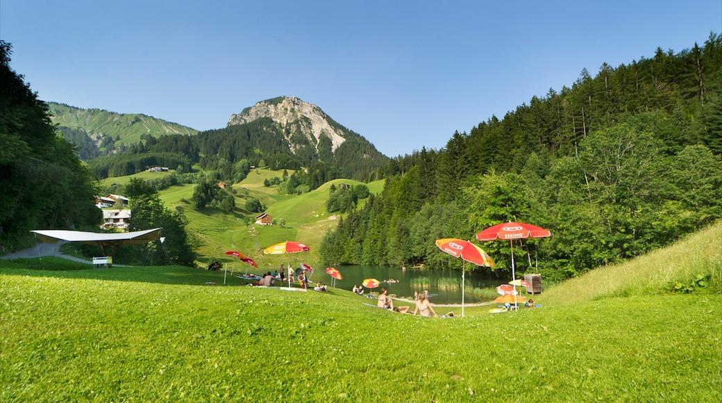 Skigebiet Damüls Mellau Faschina welches beinhaltet Wälder und Berge