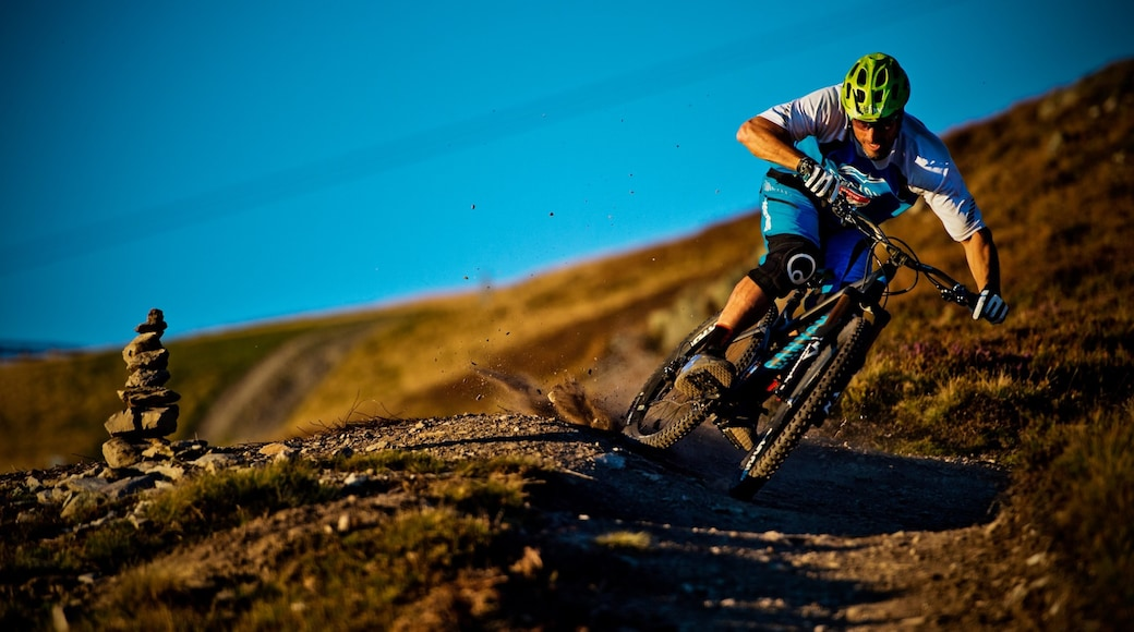 Saalbach-Hinterglemm Ski Resort showing mountain biking as well as an individual male