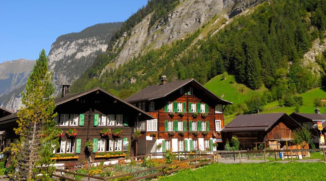 Alpes Berneses