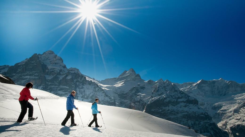 Grindelwald mostrando raquetas de nieve y nieve y también un grupo pequeño de personas