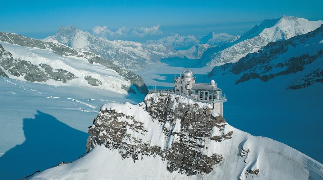 Jungfraujoch mostrando montanhas, um observatório e neve
