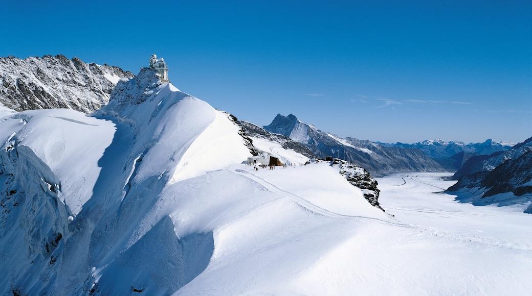 Jungfraujoch que inclui neve e montanhas