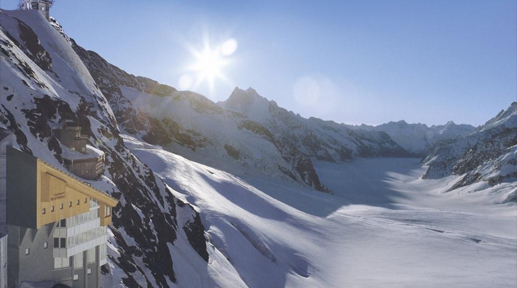 Jungfraujoch mostrando neve e montanhas