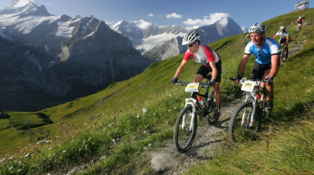 Eiger featuring tranquil scenes and mountain biking as well as a small group of people