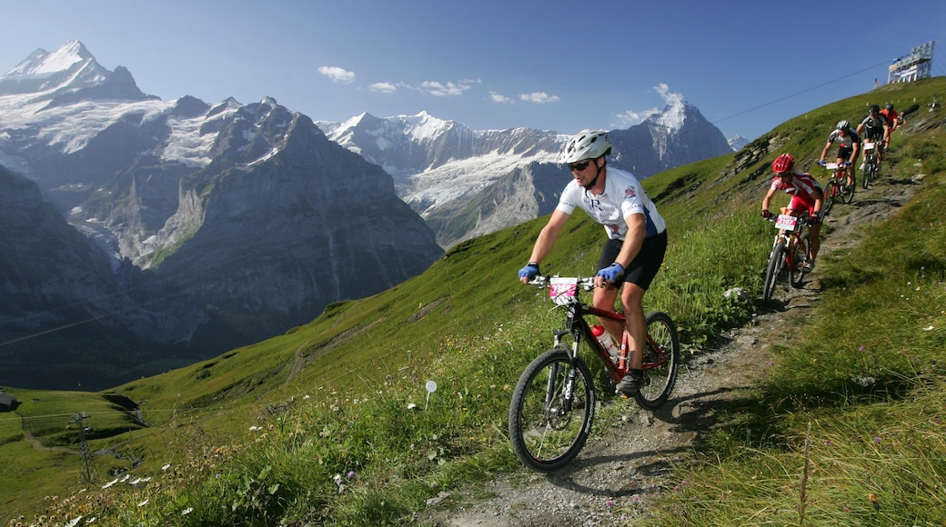 Eiger featuring mountain biking and tranquil scenes as well as a small group of people