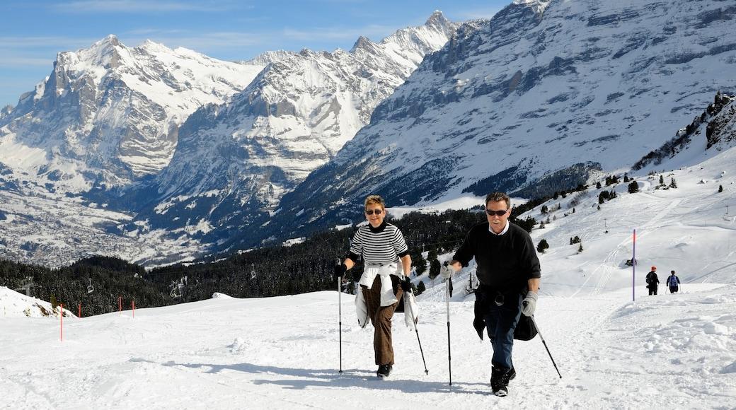 Lauterbrunnen qui includes montagnes, randonnée ou marche à pied et neige