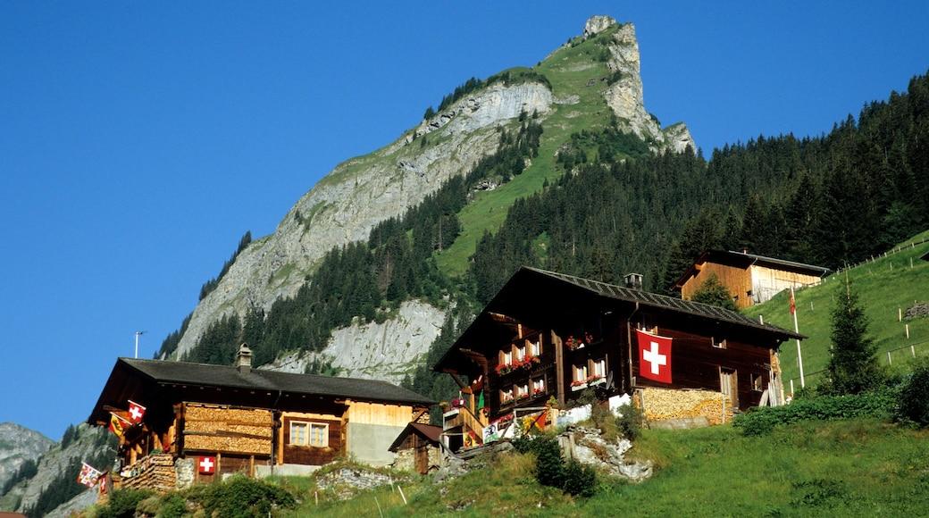 Alpes bernoises montrant montagnes
