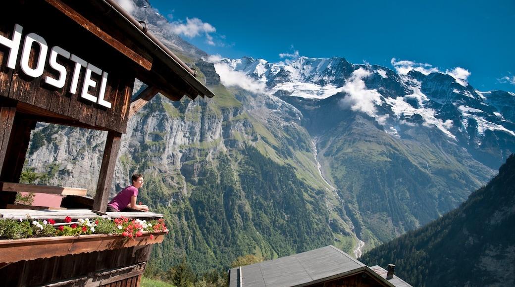 Alpes bernoises montrant montagnes aussi bien que femme