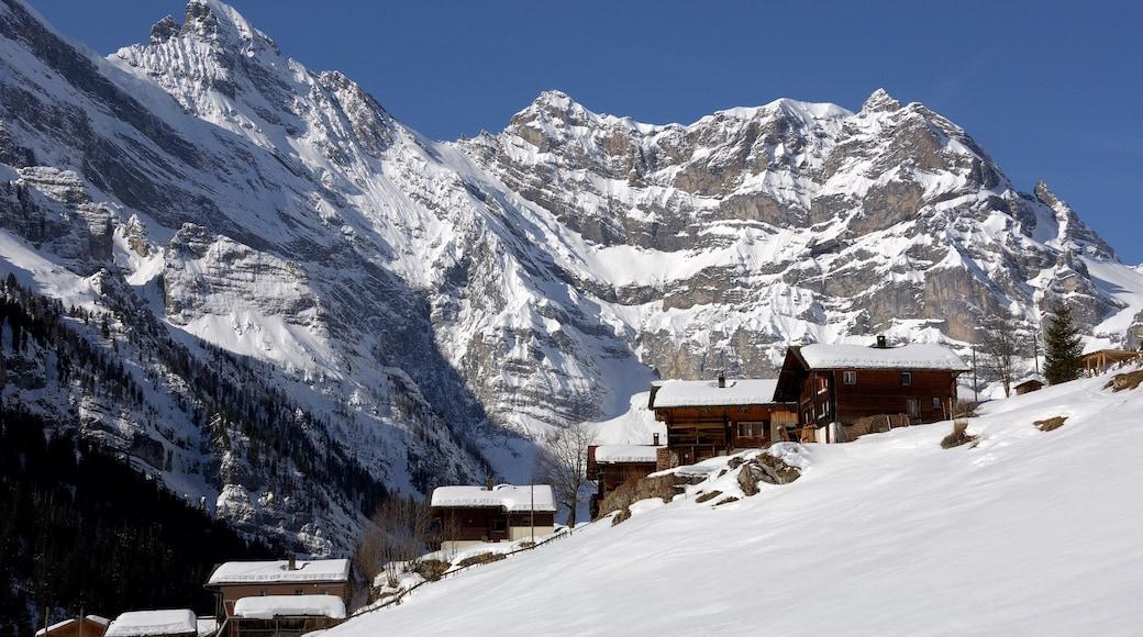 Alpes bernoises mettant en vedette neige, montagnes et petite ville ou village