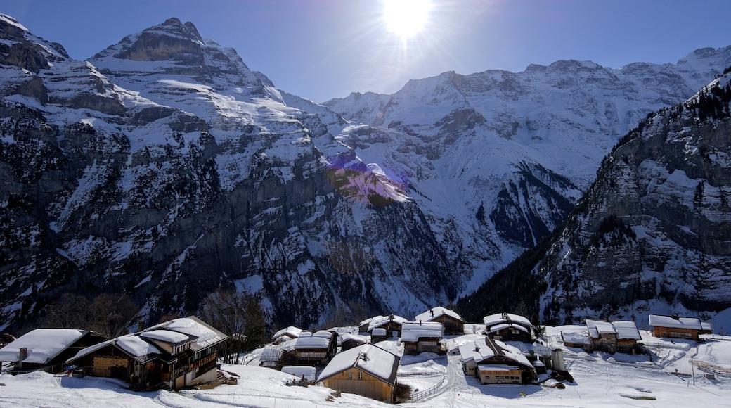 Alpes bernoises qui includes petite ville ou village, neige et montagnes