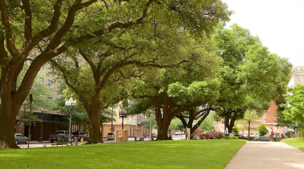 Shreveport featuring a park