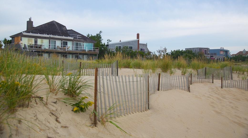 Long Island showing a beach