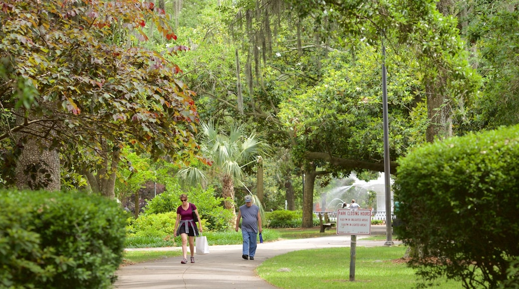 Forsyth Park showing a park as well as a small group of people