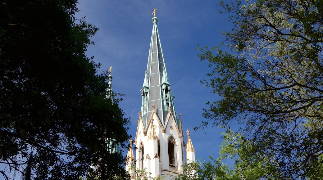 Cathedral of St. John the Baptist which includes religious aspects, a church or cathedral and heritage architecture