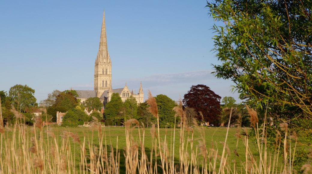 Salisburyn katedraali johon kuuluu vanha arkkitehtuuri ja rauhalliset maisemat