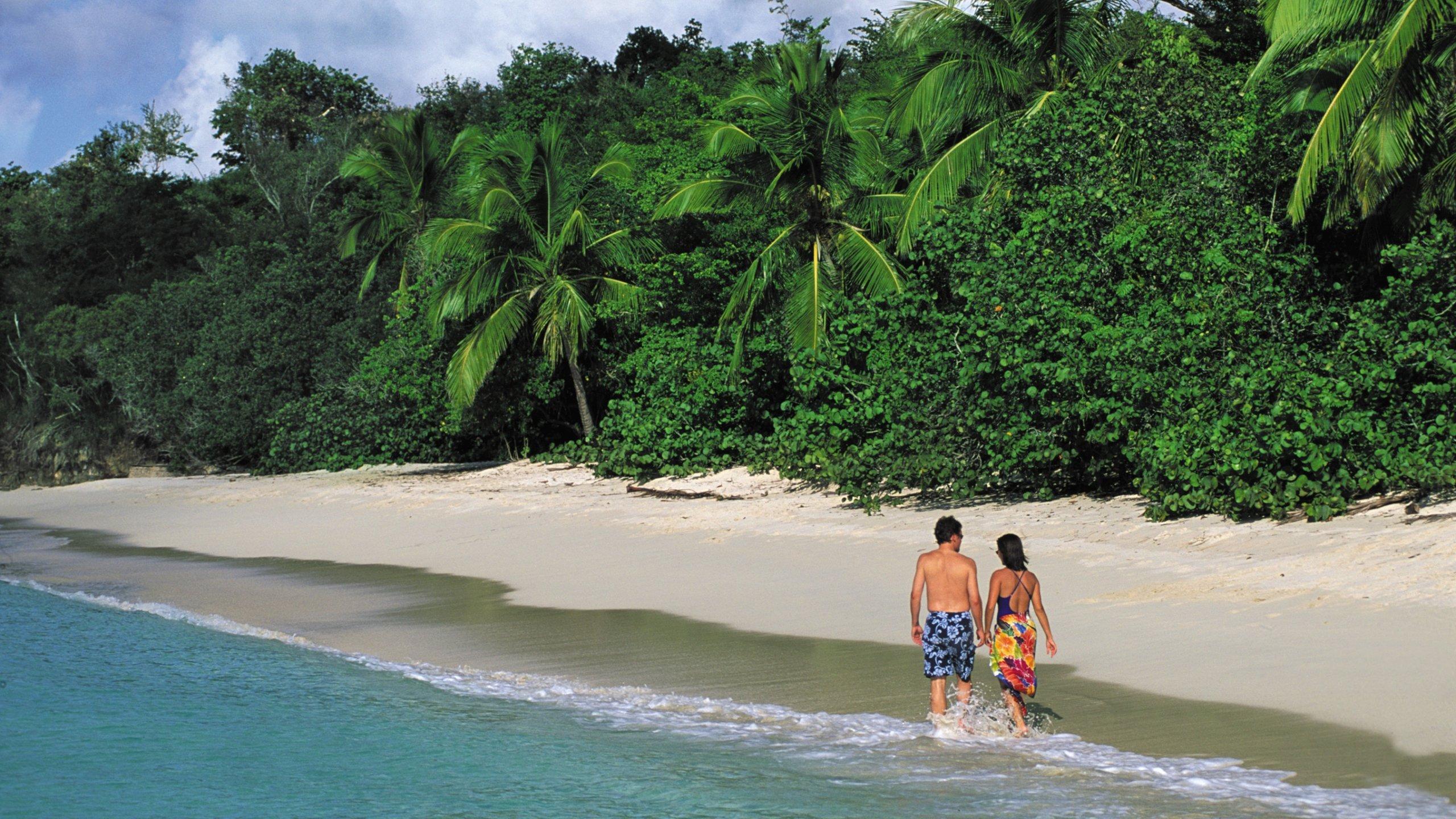 US Virgin Islands Vacation Rentals ShortTerm