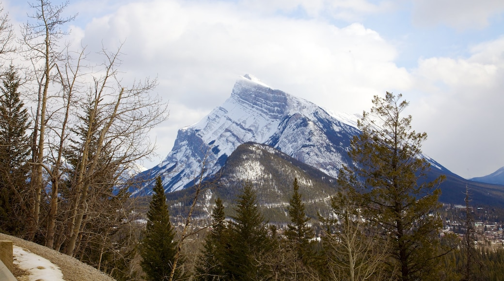 Banff showing mountains and snow
