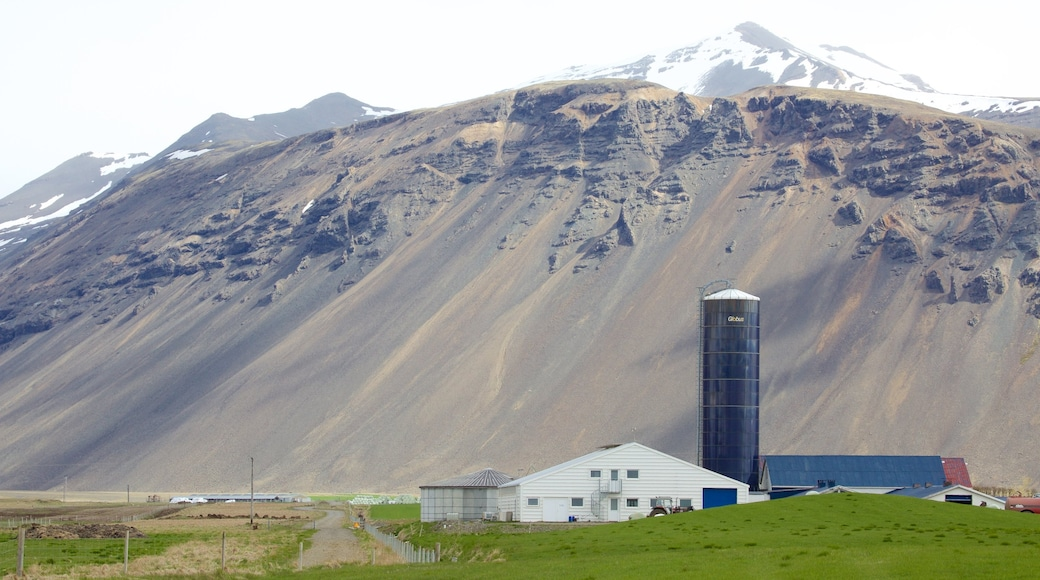 East Iceland featuring mountains and tranquil scenes