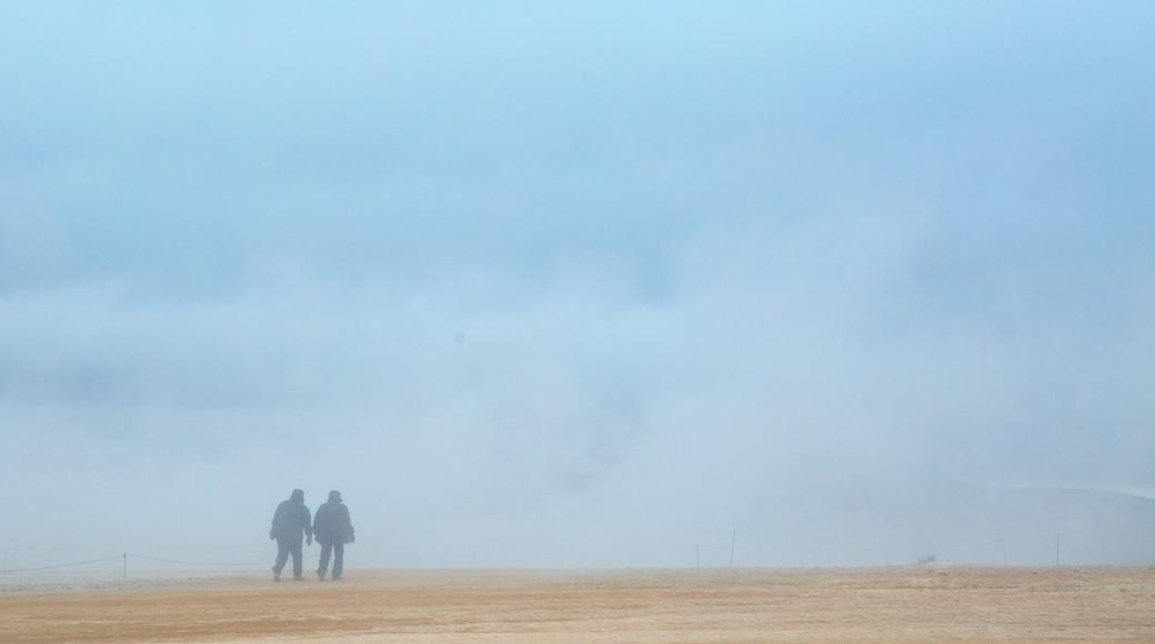 Namafjall das einen Nebel sowie Paar
