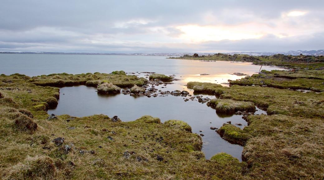 Myvatn which includes general coastal views