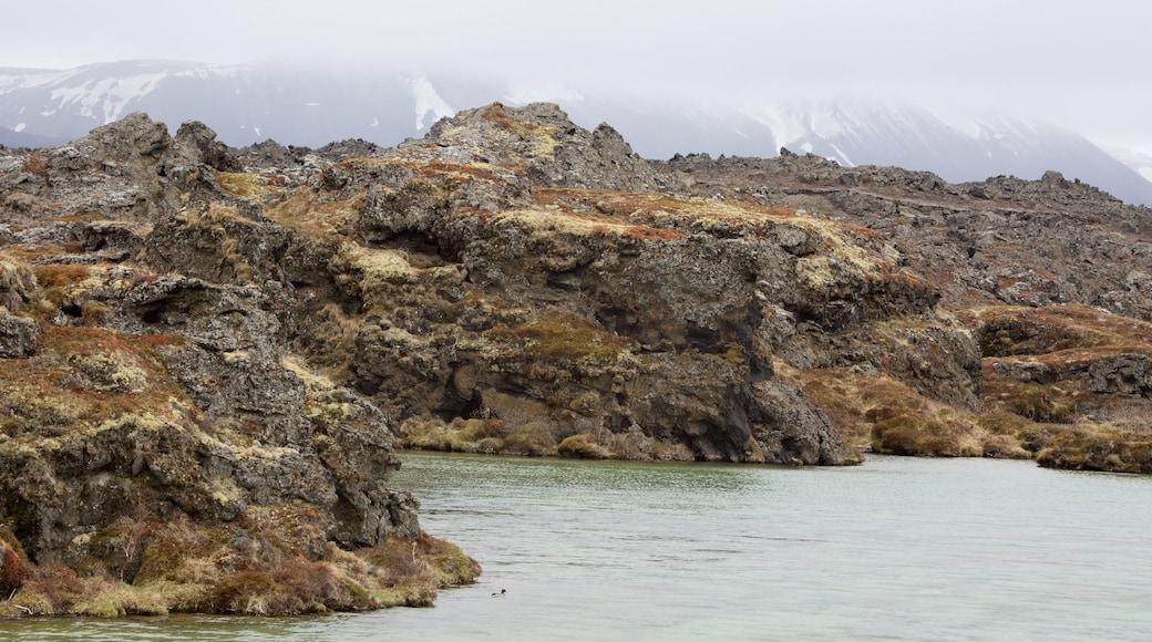 Myvatn featuring mist or fog and rocky coastline