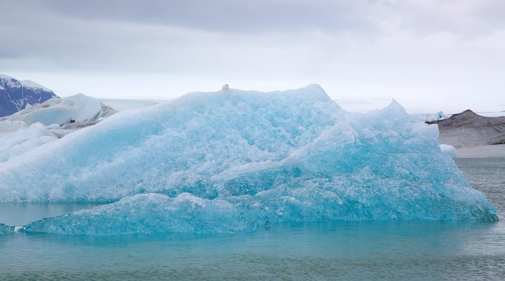 約古爾薩爾隆潟湖 设有 下雪