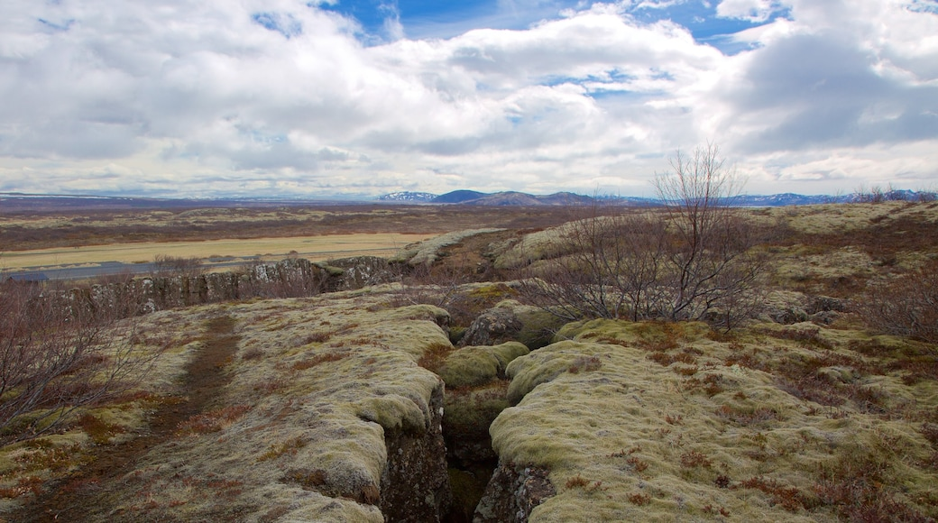 Thingvellir National Park showing tranquil scenes