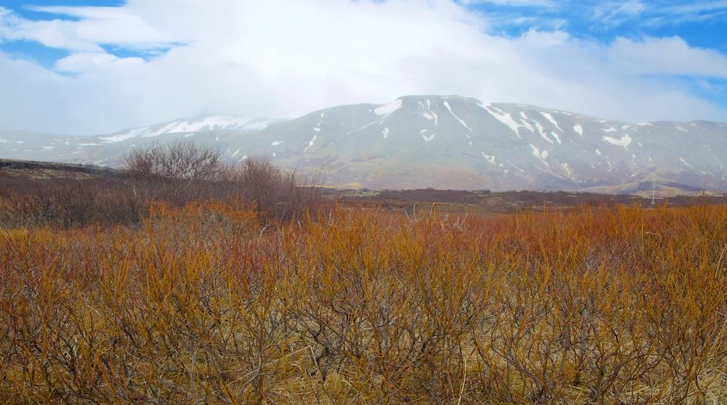 Thingvellir National Park featuring tranquil scenes
