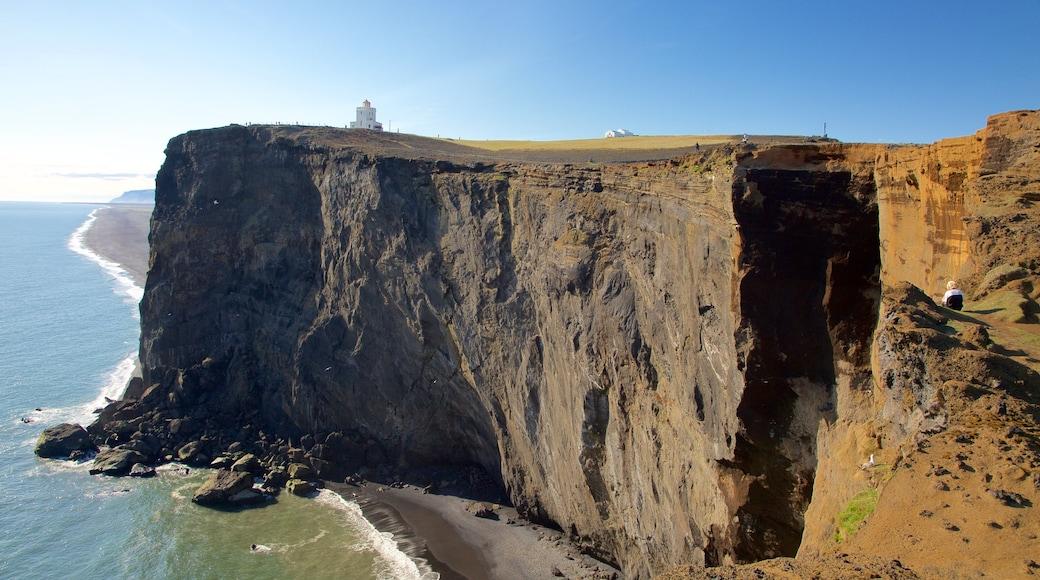 Dyrholaey which includes rocky coastline