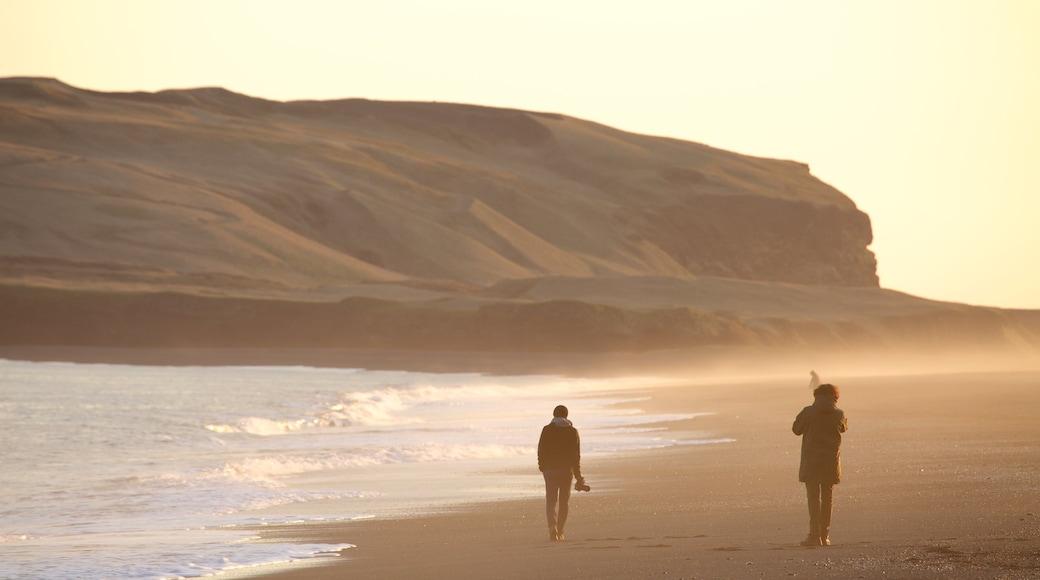 Svarta stranden som inkluderar dimma och en solnedgång såväl som en liten grupp av människor