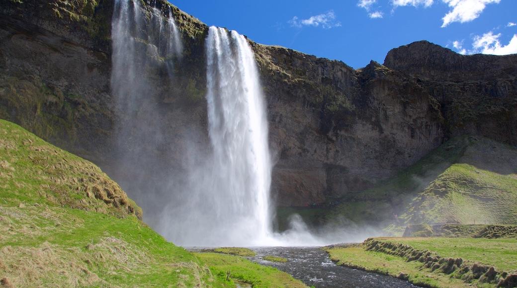 Seljalandsfoss showing a cascade