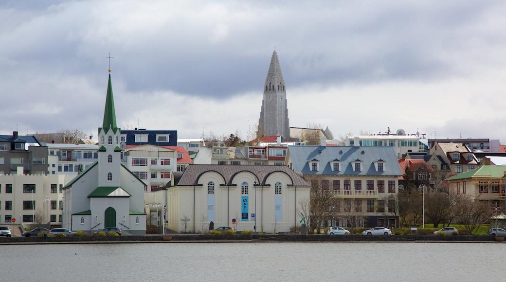Harpa featuring general coastal views and a coastal town