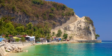 Cebu which includes tropical scenes and general coastal views