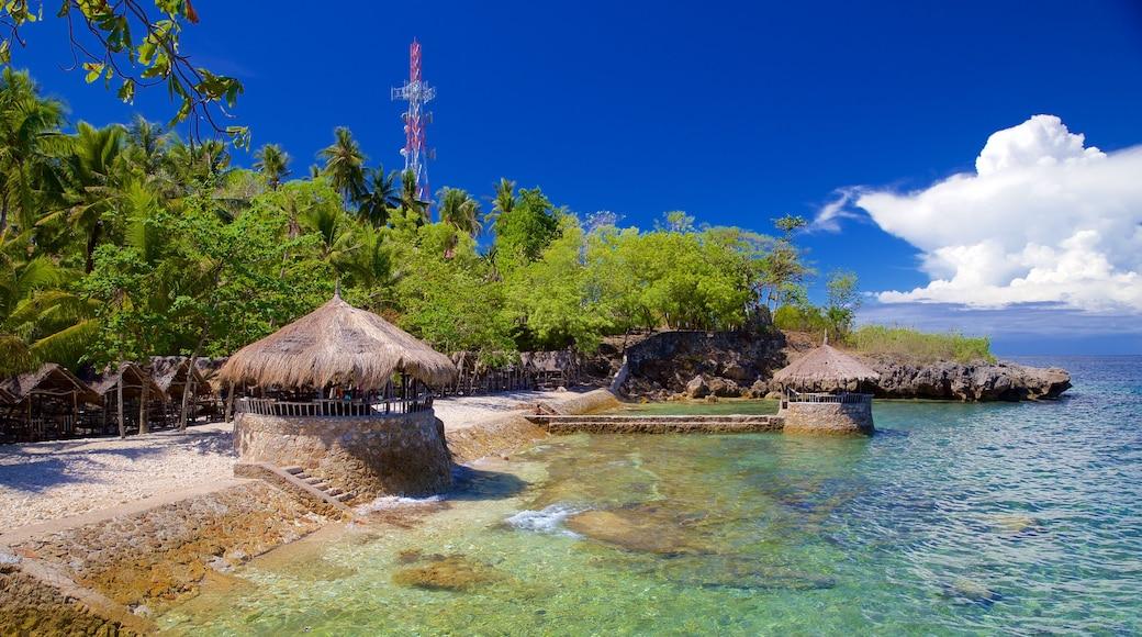 세부 섬 을 특징 일반 해안 전경 과 아열대 풍경