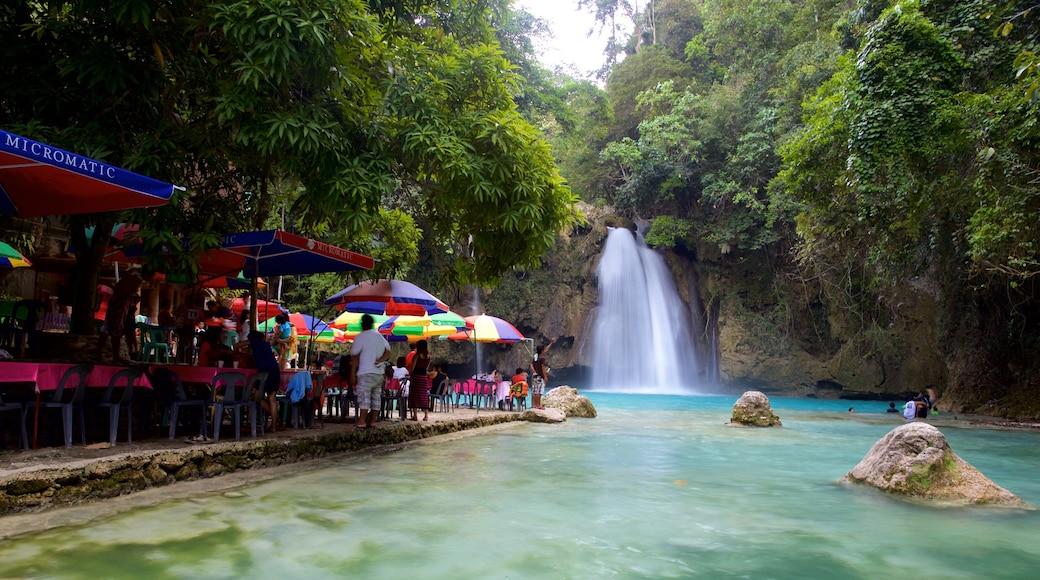 Cascate di Kawasan mostrando fiume o ruscello, mangiare all\'aperto e cascate