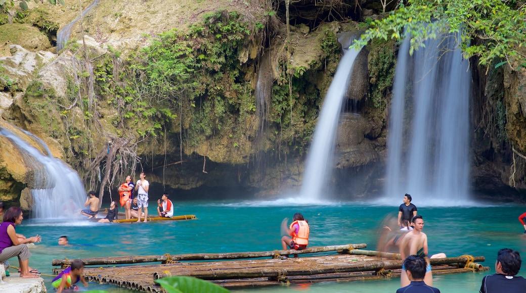 Kawasan Falls showing a cascade, a river or creek and swimming