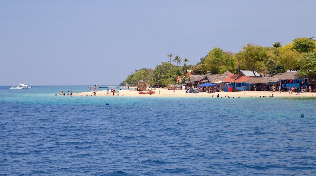 Moalboal featuring general coastal views