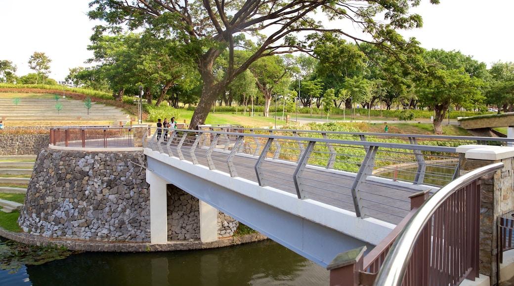 Alabang showing a bridge