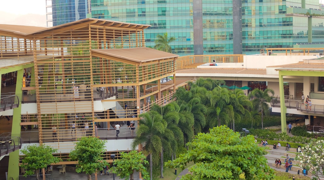 Ayala Center showing a garden and modern architecture