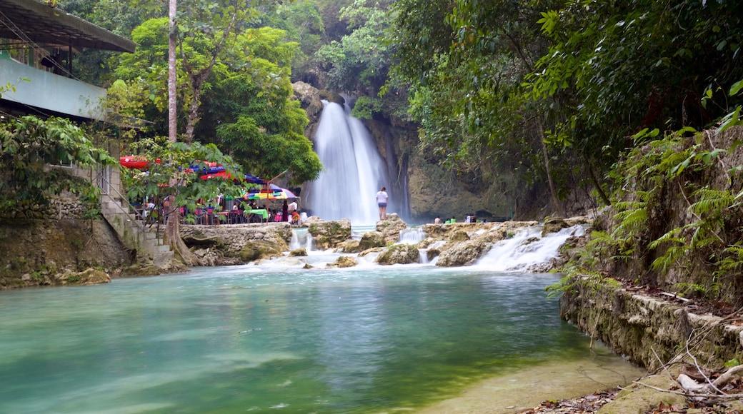 Cascate di Kawasan che include lago o sorgente d\'acqua e cascate
