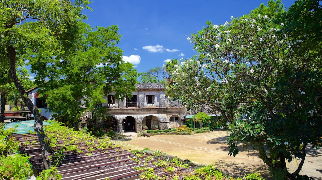 Fort San Pedro showing a garden