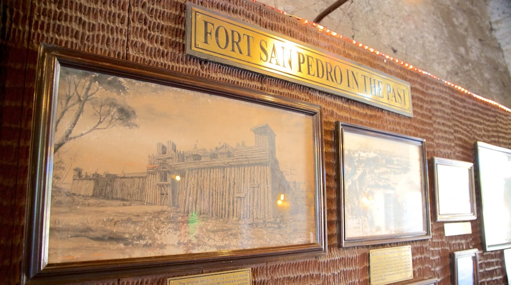 Fort San Pedro showing art and signage