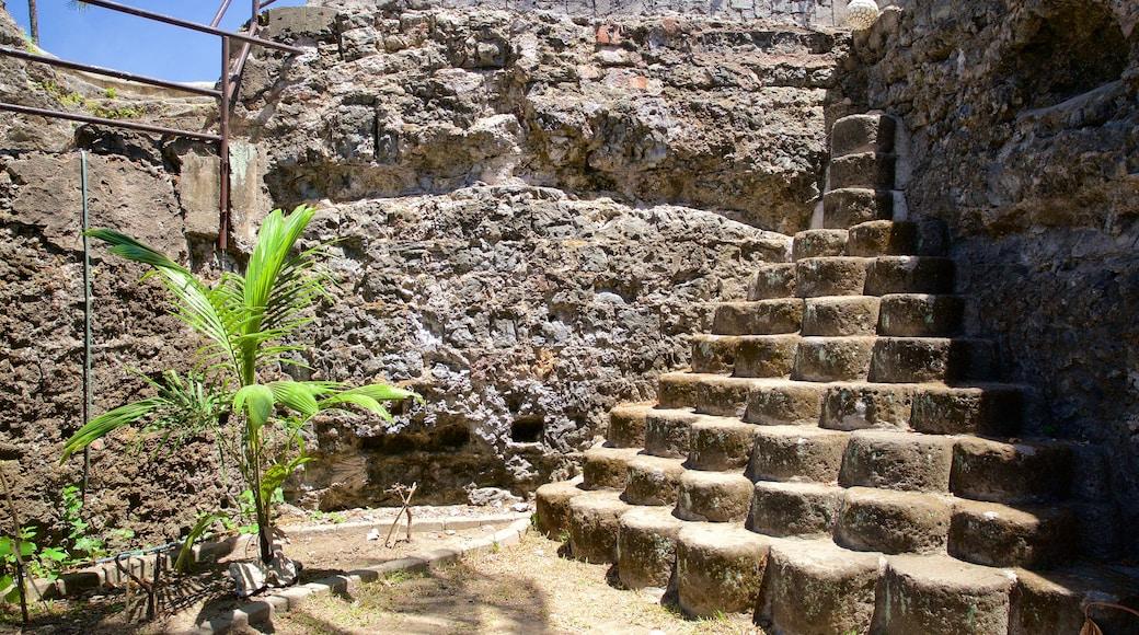 Fort San Pedro which includes a ruin