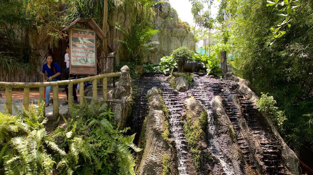 Tempio di Simala caratteristiche di cascata e paesaggio forestale
