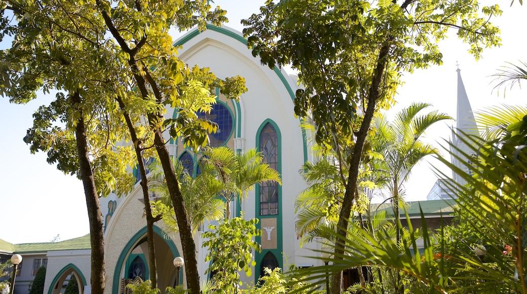 카르멜리테 수도원 을 보여주는 종교적 요소, 정원 과 문화유산 건축