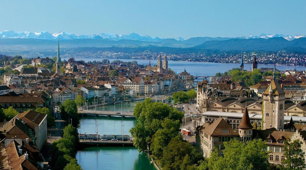 Lago de Zurique que inclui uma cidade e um rio ou córrego