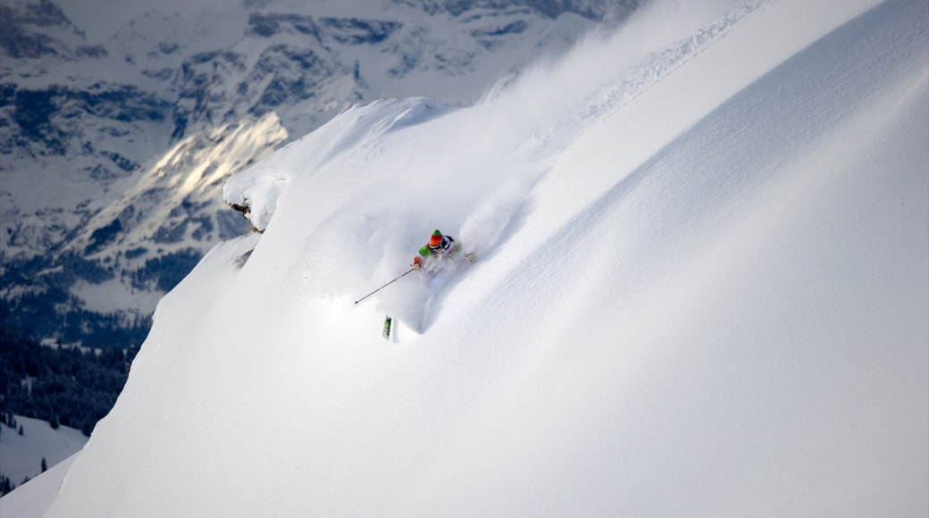 Les Diablerets Ski Resort which includes snow, mountains and snow skiing